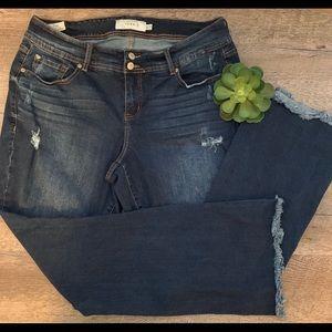 TORRID Distressed Raw Edge Jeans